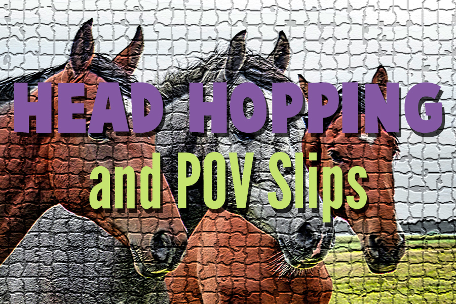 Head Hopping and POV Slips