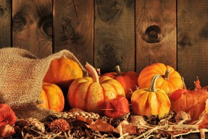 pumpkins jute bag