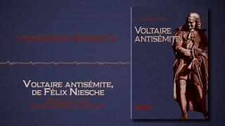 Monsieur K. présente « Voltaire antisémite » de Félix Niesche