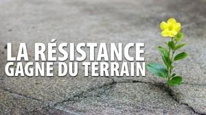 LA RÉSISTANCE GAGNE DU TERRAIN – 5 FÉVRIER 2021
