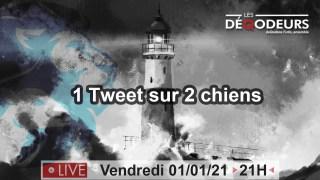 LE MONDE VA CHANGER !!! Part4-Dan Scavino(live du 1er janvier)