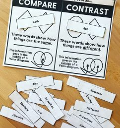 Teaching Compare and Contrast Skills in Speech \u0026 Language Therapy   Speechy  Musings [ 1024 x 819 Pixel ]