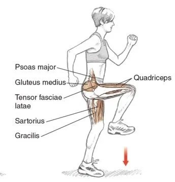 How to Develop Hip Flexors for Speed