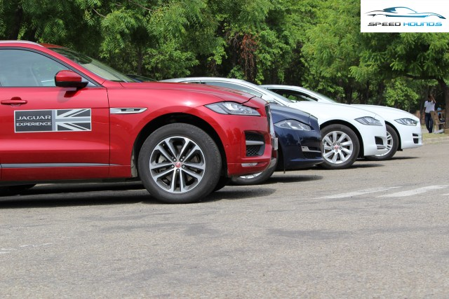 Jaguar Art of Performance