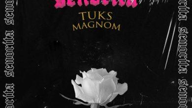Magnom - SENORITA ft Tuks (prod. by Tuks) speedmusicgh