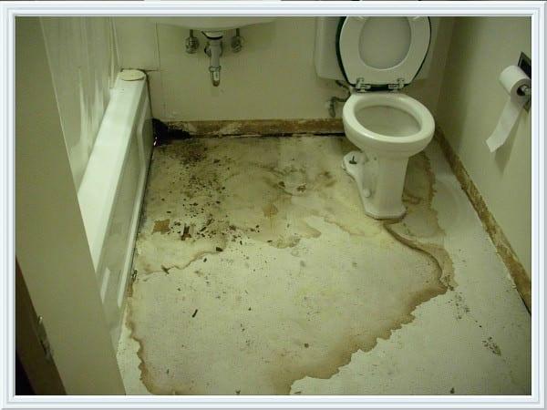 Bathroom Leak Repair  Speedway Plumbing Houston Texas