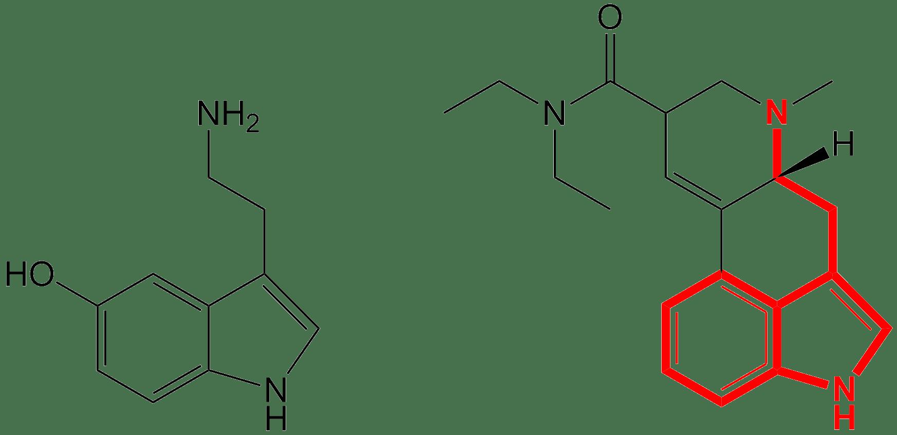 Helt Skit Artikel Del 2 Serotonin En Historia Om