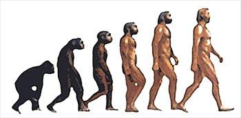 ape-man-evolution-larger