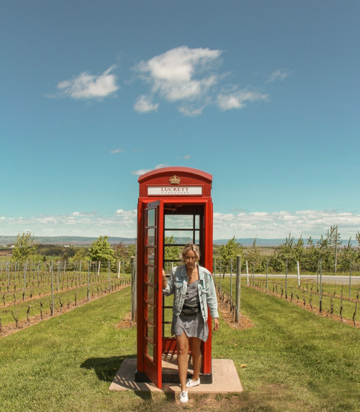 spellbound travels luckett vineyards nova scotia
