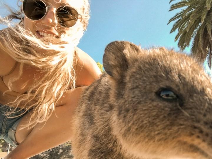 spellbound travels rottest island selfie