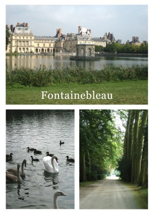 Mosaic of Fontainebleau castle and gardens