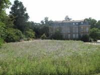 Summer flowers Jardin des Plantes