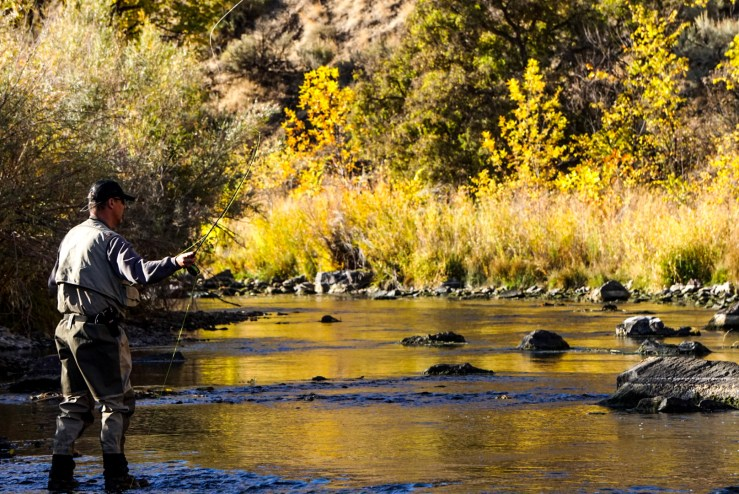 Fly Fishing Conservation Stories to Watch in 2020