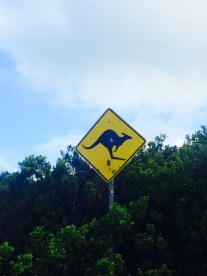 'Roo Crossing