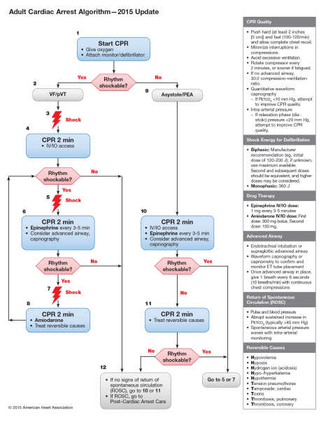 Source: https://eccguidelines.heart.org/index.php/circulation/cpr-ecc-guidelines-2/part-7-adult-advanced-cardiovascular-life-support/