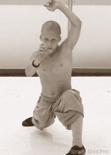 SENI 2014 Shaolin Kung Fu pic 10