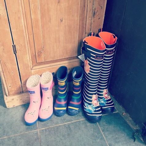 Morning instafans. I think today could be another wellie day! I'm loving autumn at the min. The possibilities, the things to look forward to! Screen free Tuesday post will be a little late today! Sorry.