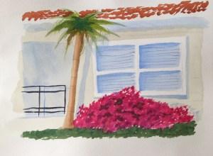 Sarrasota window