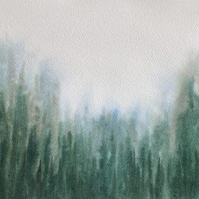 Fog Valley