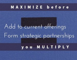 Add to current offerings Form Strategic Partnerships