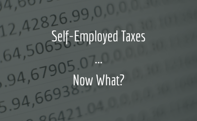 self employed taxes calculator cover