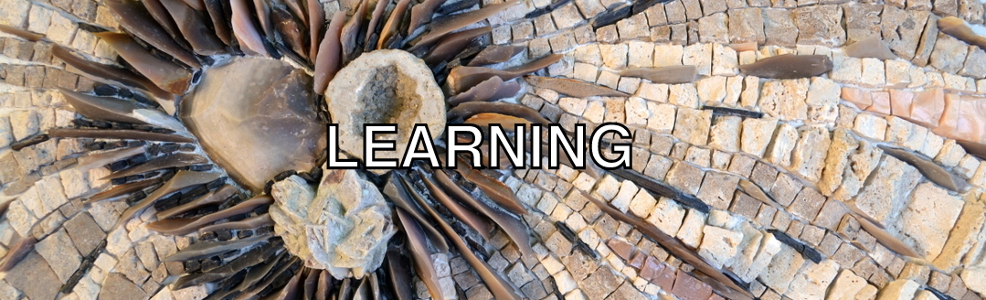 learning gallery cover