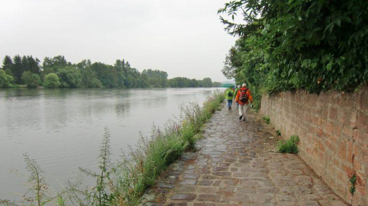 20190711-Auf dem Weg nach Niedernberg