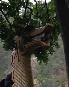 Draken väntar tåligt i skydd av ekens lövverk