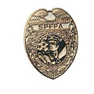 Lapel pin shield