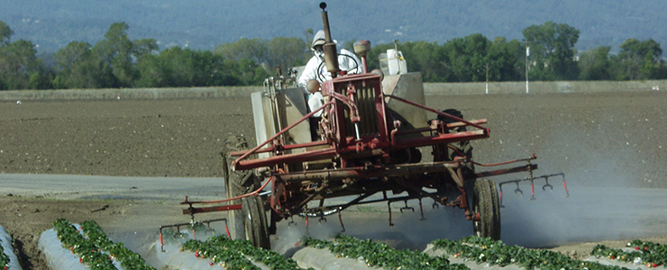 spraying pesticides in a field