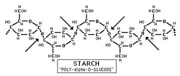 Molecular structure of starch glycogen and cellulose. Cape