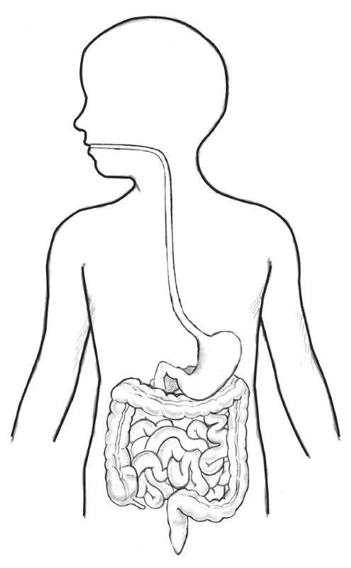 The Basic Biology and Transmission of Poliomyelitis