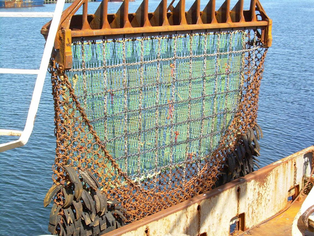 Scallop_dredge_2