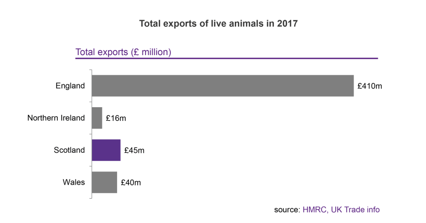 Animal Exports Blog_total exports-01
