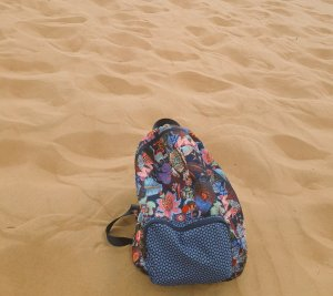Dune Safari / Arabian Adventures