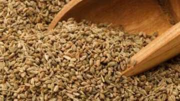 carom seeds in a large sppon. post on what is carom seed and their use for health benefits