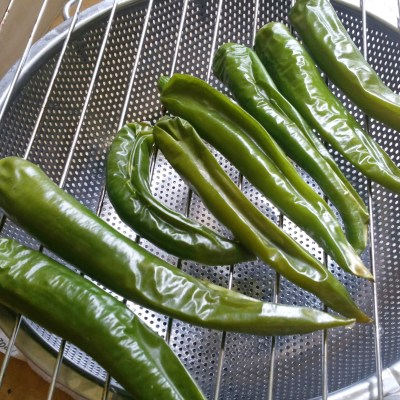 roasted green chilis on a grill