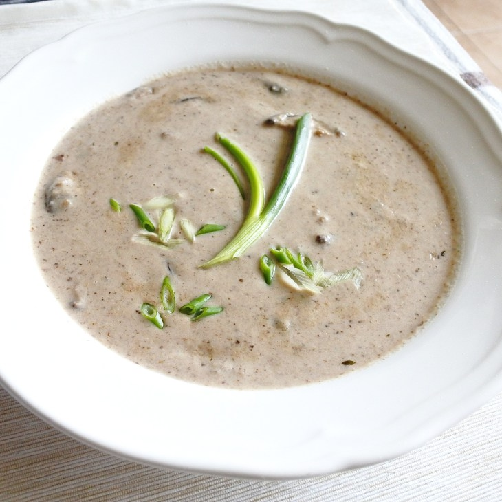 mushroom soup garnished with scallions