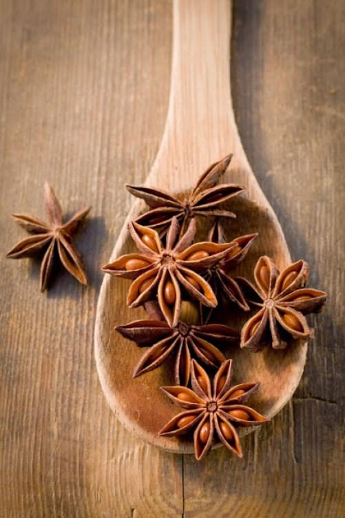 star-anise (2)