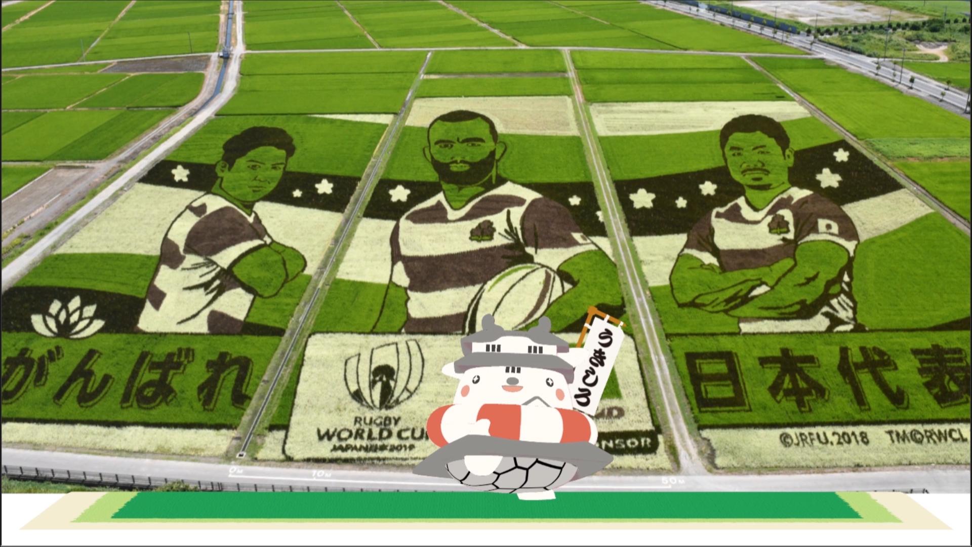 【ラグビーワールドカップ2019日本大会!】を応援するしろ!!【田んぼアート】
