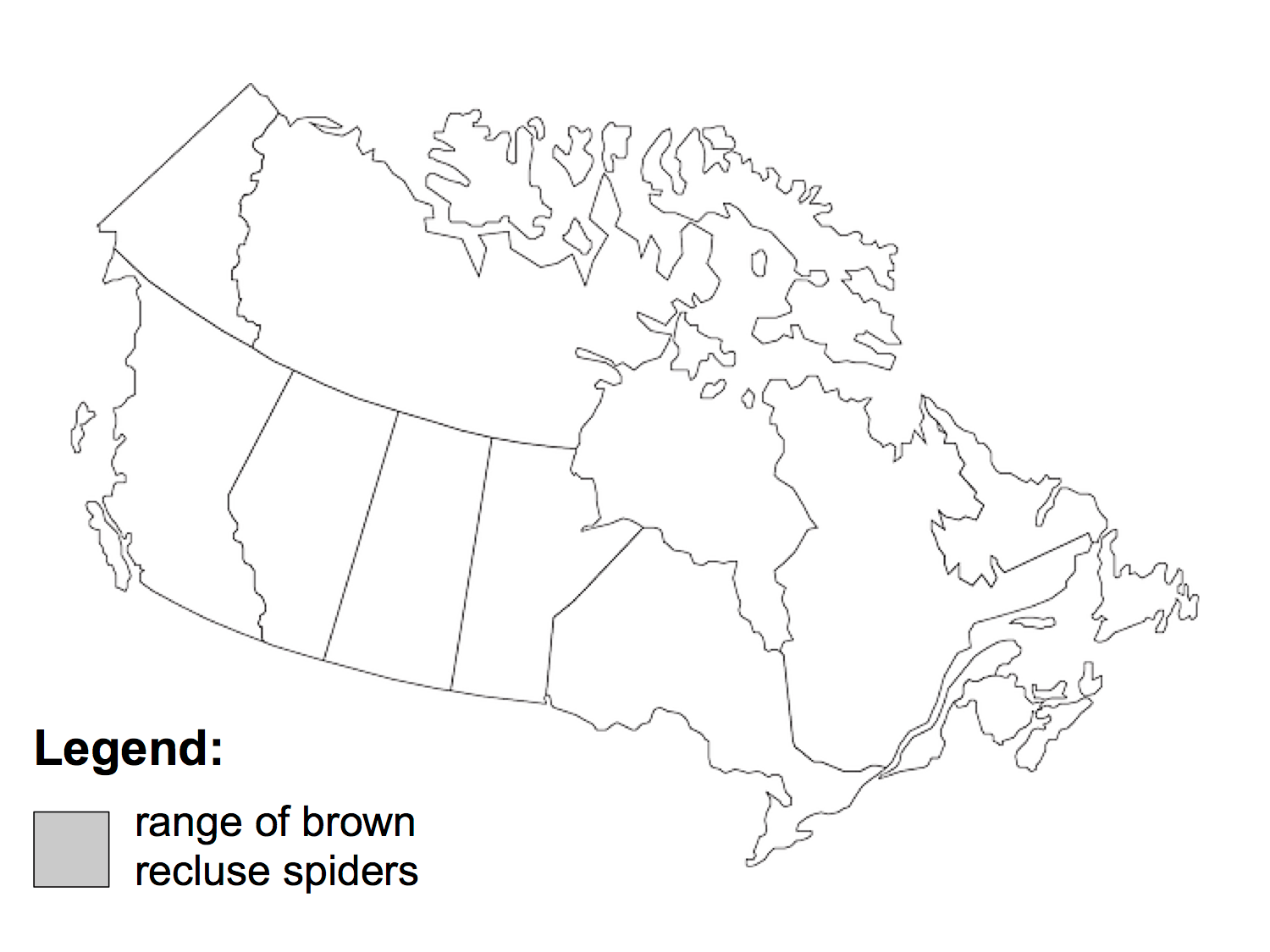How To Tell If A Spider Is Not A Brown Recluse