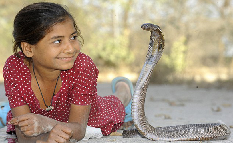 Incredible Indian Snake Girl has Friendship with snakes