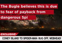 Daily Bugle - Video 3 - Featured