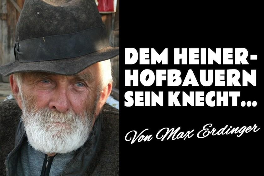 Dem Heinerhofbauern sein Knecht - Foto: Heinerhofbauer