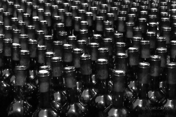 vergessener Weinkeller in Slano