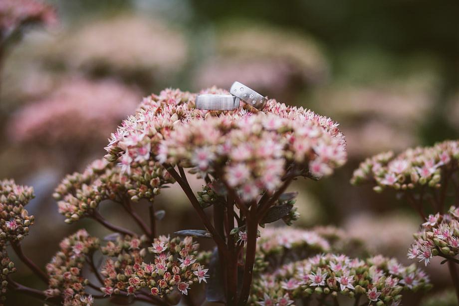 Hochzeitsfoto der Trauringe auf einer Blume