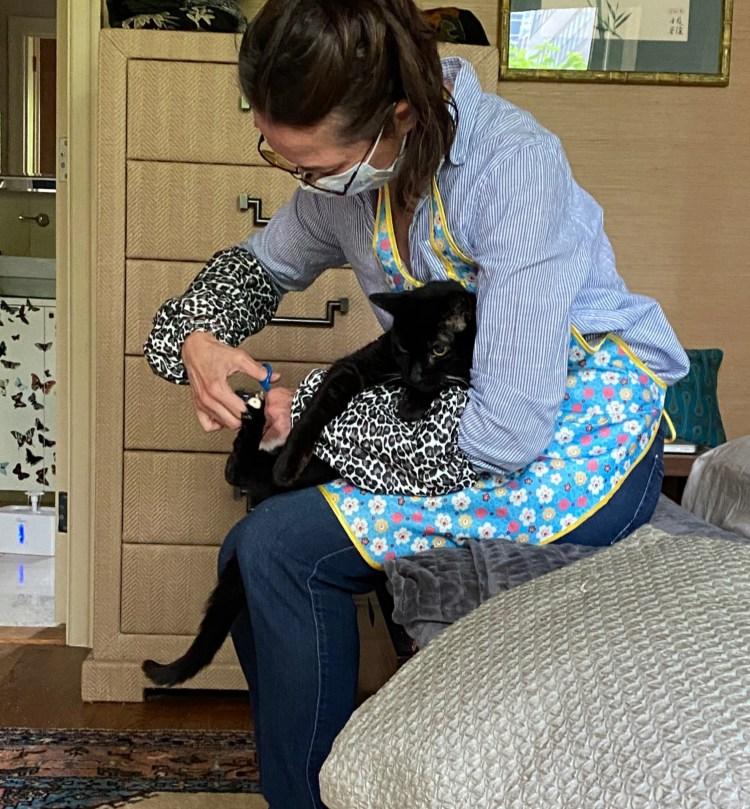 Spiffy Kitty Slippy Sleeve