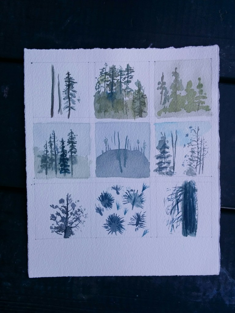 Evening painting at camp, 3x3 grid suggested by Andie. I like this because you can see the light fading over time, from green to blue