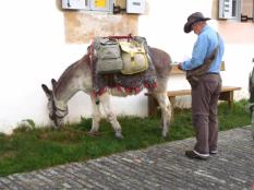 I wanted to have a chat with this man, but he either went the other way, or that donkey is supersonic?¿!