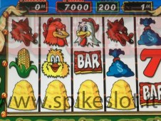 4 paglie slot fowl play gallina